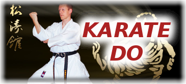 button tg schweinfurt karate do